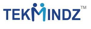 TekMindz_Logo